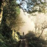 【宜兰】必去的4条绝美步道~透明天空步道、全球最美小路