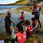 来趟生态旅游!绿岛深度5玩法 护蟹任务、夜间海钓